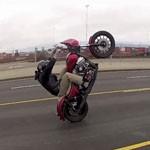 freeride wheeling harley