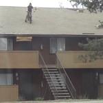 saut toit bmx