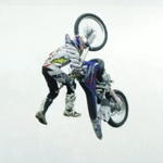 bike flip tom pages fmx