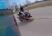 motard percute chien