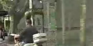 moto pasteque